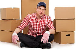 Willesden Removal Company